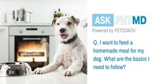 Want to cook for your pet? You're definitely going to want to read this first. #AskPETMD Have a question only a veterinarian can answer? Find your answer below: