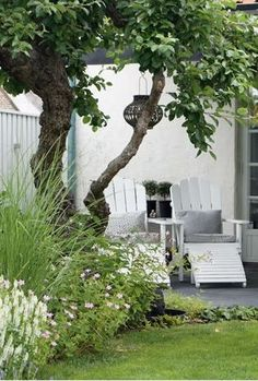 Simple green and white garden idea for adamchristopherdesign.co.uk
