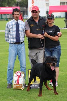 Hades Vom Kümmelsee winning Champion class at MRL 2014