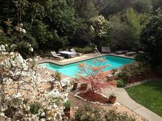 Gorgeous garden and pool in spring time, Kentfield, CA - in Marin County