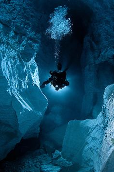 Polar Scuba Diving is much, MUCH colder than diving Puerto Rico.