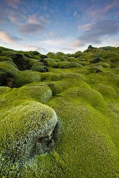 """Moss Hump""  near Storidalur Mile after mile of volcanic cinders covered with moss.  This is the reason for the saying that ""Iceland is green and Greenland is ice""."