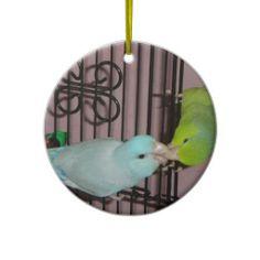 Kissing parrotlets ornaments