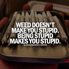 weed doesn`t make you stupid. being stupid makes you stupid.
