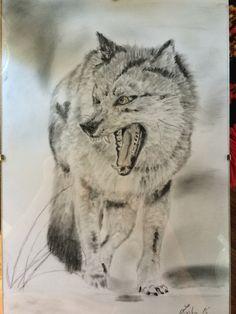 kresba vlka tužkou a pastelem od Zuzky Dušánkové