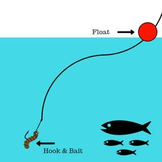 A full guide for beginners on how to use a fishing float/bobber to catch all different species of fish. Includes image and video guides plus recomened bait. Trout Fishing Bait, Trout Fishing Tips, Fishing Rigs, Walleye Fishing, Fishing Knots, Carp Fishing, Fishing Bobbers, Fishing Tackle, Fishing Accessories