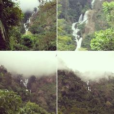 @Regrann from @sejarahbandung -  Curug Tujuh atau Curug Limbung merupakan curug yang airnya berasal dari Gunung Limbung. Gunung dengan ketinggian 414 m ini berada di desa Neglasari kec Cisompet kab Garut.  Air terjun ini bisa dilihat dari jalan raya. Dari Bandung jarak menuju air terjun ini sekitar 120 km melewati Cikajang menuju Pameungpeuk.  #garut #garutselatan #airterjun #jawabarat #exploreindonesia #explorejabar - #regrann  #bandungnostalgia