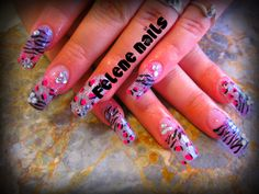 <3 wild Pinks