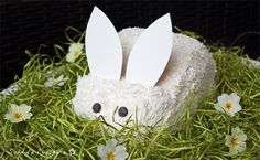 Easter Bunny Cake & Easter Decoration | Sunny's Cupcakes Konstanz