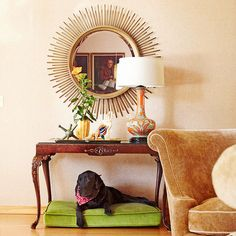 A dog bed can also add a splash of color to your living spaces: http://www.bhg.com/pets/dogs/dog-products/cool-dog-bed-ideas-/?socsrc=bhgpin011415colorfulandcomfy&page=5