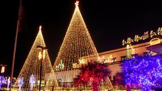 christmas lights online stores are existed for your help buy christmas tree lights