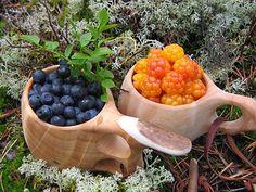 Arktiset Aromit ry Serving Bowls, Tableware, Kitchen, Dinnerware, Cooking, Tablewares, Kitchens, Place Settings, Bowls