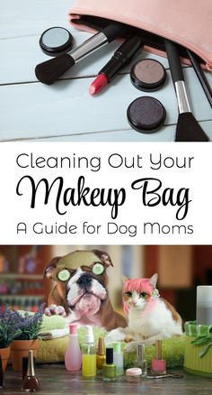Cleaning Out Your Makeup Bag - A Guide for Dog Moms