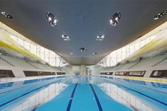 Finalistas Premio RIBA Stirling Prize 2014 London Aquatics Centre