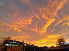 22.12.2014 bei Pischelsdorf (+15 Grad!)