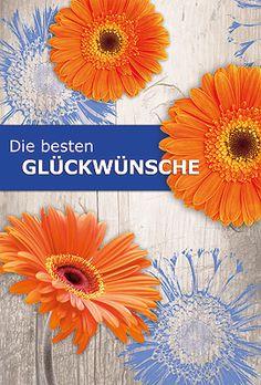 mit Kuvert Liebe Wünsche Box Doppelkarte mit Kaltfolienveredelung Grußkarte