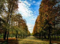 Autumn in Tuleries