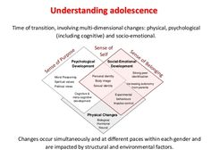 Understanding adolescence Time of transition, involving multi-dimensional changes: physical, psychological (including cogn...