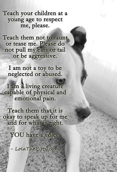 Very important - teaching children to respect animals at a young age. Via LolaThePitty.com