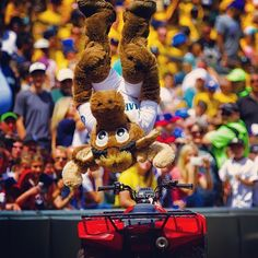 He drives an ATV and does backflips just because. He is the most interesting Moose in the world. #Mariners