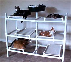 Resultado de imagem para pvc diy cat hammock Tap the link Now - Luxury Cat Gear - Treat Yourself and Your CAT! Stand Out in a Crowded World! Diy Cat Hammock, Cat Climber, Cat Run, Cat Towers, Cat Stands, Cat Enclosure, Cat Condo, Pet Furniture, Cat Accessories