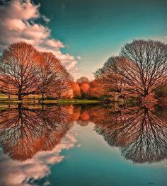Gorgeous reflection