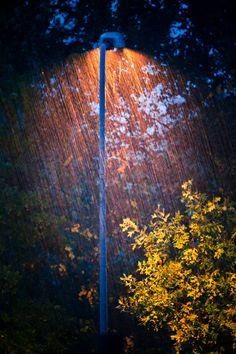 Autumn rain  ~Inge~ @ http://www.facebook.com/ComicsFantasy & http://www.facebook.com/groups/ArtandStuff