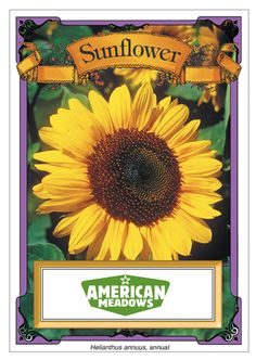 Sunflower Seeds from American Meadows: every purchase supports charity.