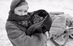 Популярные записи по теме «животные»