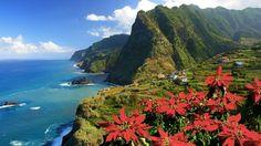 Nordküste mit Terrassenlandschaft bei Boa Ventura, Insel Madeira, Portugal