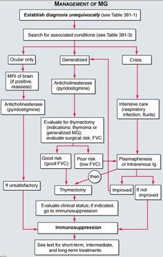 Tx of Myasthenia Gravis: *Meds that increase the nerve-to-muscle signal: Mestinon, 3,4-Diaminopyridine. *Meds that reduce the body's autoimmune response: Prednisone, Imuran, Cyclosporine, and Cellcept. *Surgery to remove the thymus gland, which plays a role in the autoimmune process in MG. *Plasma Exchange (Plasmapherisis), a blood-filtering technique that removes antibodies from the blood. *IV immunoglobulin(s) which are separated from donor blood, purified and concentrated.