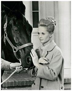 Image - Tippi HEDREN '60 (19 Janvier 1930) - RARE PIX VINTAGE ACTRESSES - Skyrock.com