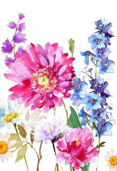 Leading Illustration & Publishing Agency based in London, New York & Marbella. Watercolor Cards, Watercolor Print, Watercolour Painting, Watercolor Flowers, Watercolors, Motif Floral, Arte Floral, Inspiration Art, Flower Wallpaper