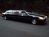 Searching for hire in then Silver Service Limos have a wide range of Stretch Limousines with affordable price. To Contact us Call on 5971 Before I Die, Limo, Melbourne, Places To Go, Searching, Bucket, Happy Birthday, Range, Silver