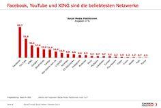 Noch eine #SocialNetwork-Studie: In Dtl. sind Facebook, YouTube & Xing am Beliebtesten (Okt. 2013, TomorrowFocusMedia)
