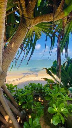 Beautiful Photos Of Nature, Beautiful Places To Travel, Amazing Nature, Wonderful Places, Beautiful Beaches, Beautiful Landscape Wallpaper, Beautiful Landscapes, Nature Photography, Travel Photography