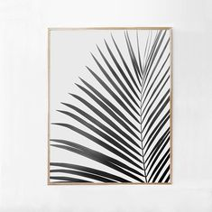 Large Walll Art Printable Decor-Minimalist, Black and White Palm Leaf Digital Print INSTANT DOWNLOAD Black and White Photography Print  ~ • ~ • ~ • ~ • ~ • ~ • ~ FILES: 5x jpgs in various sizes, form large print to medium:  - A1 ISO Paper Standard Size  - 24x36 inches  - 16x20  - 12x18  - 8x10  All of the files are high resolution 300dpi files. Artwork is print ready and will produce,excellent quality crisp and clear prints. >>If you require additional size, or different file format ple...