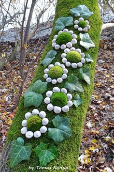 Land art from Hungary by tamas kanya