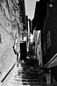 Alley - topic of the day BEAUVE.com