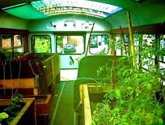 growing food, lunch boxes, farmers market, mobil, bus convert