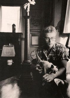 have i mentioned how much i love james dean? and cats. james dean and cats. I Love Cats, Crazy Cats, Cool Cats, Photos Vintage, Old Photos, Siamese Cats, Cats And Kittens, Kitty Cats, Ragdoll Kittens
