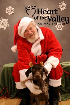 Great simple background idea  for the pet photos. Heart of the Valley animal shelter, Bozeman, MT