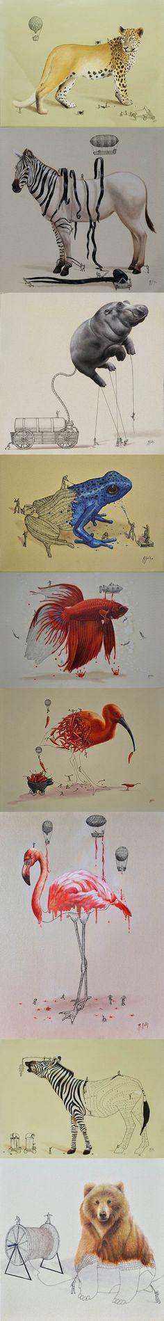 """Les réalisations de Ricardo Solís avec notamment cette série géniale en image ci-dessous qui est une sorte d'exploration de la """"construction"""" de différents animaux."""