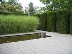haie vive d'arbuste persistant et graminées ornementales à côté de l'étang