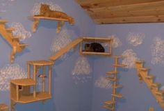 catwalks for walls - FELINE FANTASIES! Luxury cat furniture and pet supplies