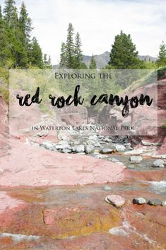 Red Rock Canyon is definitely a must-see if you are heading to Waterton Lakes National Park and it is a fascinating and beautiful place to explore! After spending three days of exploring… Canada National Parks, Parks Canada, Canada Eh, Canada Destinations, Vacation Destinations, Vacation Ideas, Places To Travel, Places To Go, Alberta Travel
