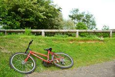 bike ride to river bicycle near grassy path Paths, Bicycle, Bike, Bicycle Kick, Bicycles