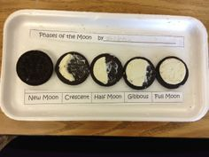 I found this the other day when looking for a quick science lesson to do with my tutee at the Boys and Girls Club. What a fun way to teach the different moon phases! Although this is geared toward second grade, I think that it can easily be tweaked to use Elementary Science, Science Classroom, Science Education, Teaching Science, Science Activities, Science Experiments, Classroom Ideas, Science Centers, Science Labs