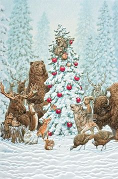 8 best pumpernickel press my favorite christmas cards images on amazon pack of 16 wilderness welcome animals fine art embossed christmas greeting cards m4hsunfo