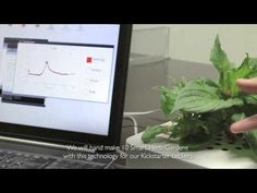 Successful alternative opportunity to grow herbs with Click and Grow's Interactive technology. Herb Pots, Making 10, Growing Herbs, Grow Your Own, Say Hi, Nasa, Opportunity, Innovation, Clever